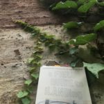 Photo courtesy of Carolyn Hall: The Field Guide on a wooden surface next to some vines with green leaves