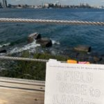 Photo by Carolyn Hall: a Field Guide with post it notes sticking out of the top in front of a dock with rocks and the ocean in the background